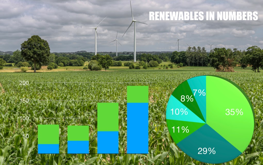 MarketResearchAnalyst.com: Renewables are the Future